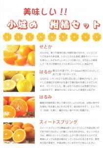 ニューおぎ2月柑橘