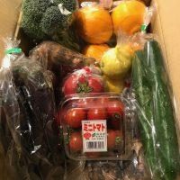 ニューおぎ3月野菜