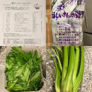 綾町旬野菜3月