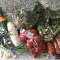 綾町お野菜1
