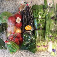 綾のお野菜6月