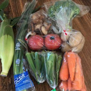 奈半利町のお野菜7月