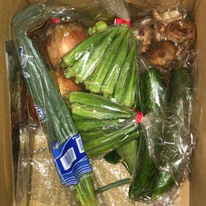 奈半利町のお野菜