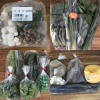 綾町のお野菜